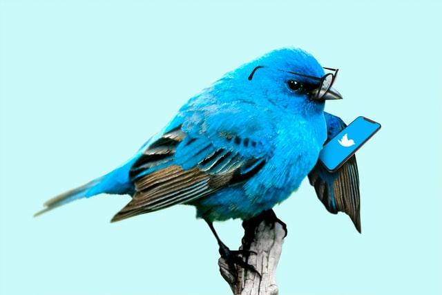 غیرفعال کردن تنظیمات حریم شخصی در توییتر